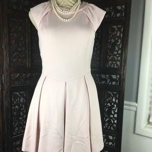 Ted Baker Kipp Dress 2 US 6 Pale Pink